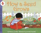 how-a-seed-grows
