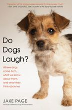 do-dogs-laugh