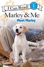 marley-and-me-meet-marley