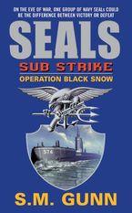 seals-sub-strike-operation-black-snow