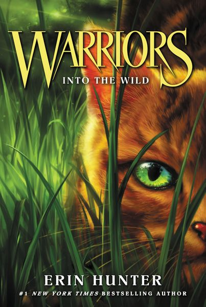 Výsledek obrázku pro cat warriors