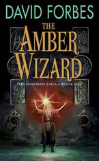 the-amber-wizard