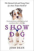 show-dog