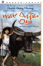 water-buffalo-days