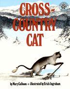 cross-country-cat