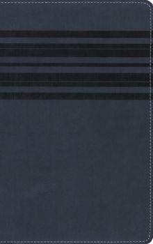 NIrV, Holy Bible, Large Print, Leathersoft, Blue