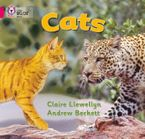 Cats: Band 01B/Pink B (Collins Big Cat) Paperback  by Claire Llewellyn