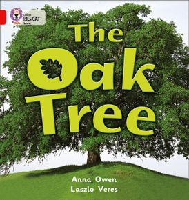 The Oak Tree: Band 02B/Red B (Collins Big Cat)