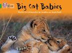 Big Cat Babies: Band 05/Green (Collins Big Cat) Paperback  by Jonathan Scott