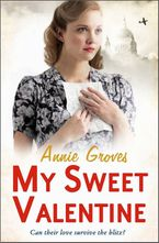 My Sweet Valentine Paperback  by Annie Groves