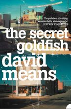 The Secret Goldfish eBook  by David Means