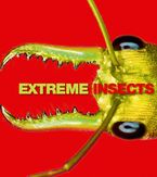 Extreme Insects eBook  by Richard Jones