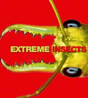 Extreme Insects book image