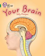 Your Brain: Band 15/Emerald (Collins Big Cat) Paperback  by Sally Morgan