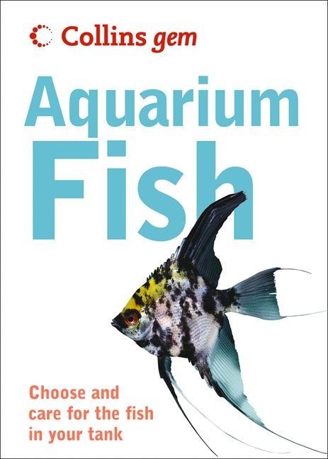 Aquarium Fish Collins Gem
