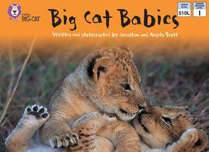 Big Cat Babies: Band 05/Green (Collins Big Cat) book image