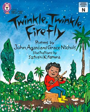 Twinkle, Twinkle, Firefly: Band 8/ Purple (Collins Big Cat) book image