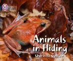 Animals in Hiding: Band 04/Blue (Collins Big Cat) Paperback  by Charlotte Guillain