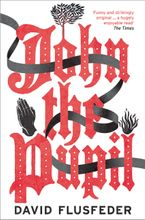 John the Pupil Paperback  by David Flusfeder