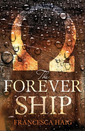Cover image - The Forever Ship