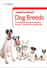 dog-breeds-collins-need-to-know