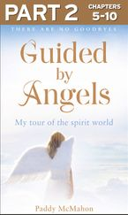 guided-by-angels-part-2-of-3-there-are-no-goodbyes-my-tour-of-the-spirit-world