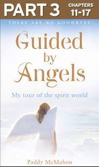 guided-by-angels-part-3-of-3-there-are-no-goodbyes-my-tour-of-the-spirit-world