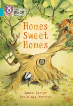 Homes Sweet Homes: Band 07/Turquoise (Collins Big Cat) Paperback  by James Carter