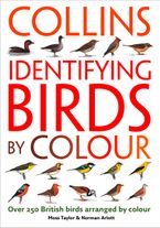 identifying-birds-by-colour