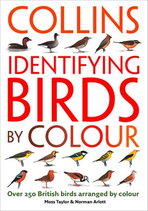 Identifying Birds by Colour book image