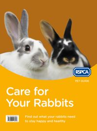 care-for-your-rabbits-rspca-pet-guide