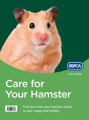 Care for Your Hamster (RSPCA Pet Guide) book image