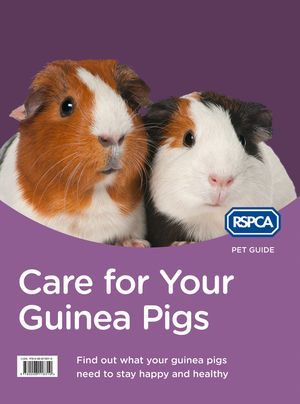 Care for Your Guinea Pigs (RSPCA Pet Guide) book image