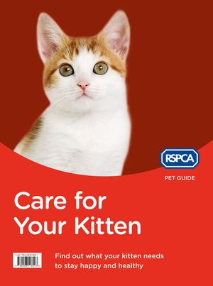 Care for Your Kitten (RSPCA Pet Guide) book image