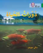 Life Cycles: Level 15 (Collins Big Cat Arabic Reading Programme) Paperback  by Sally Morgan