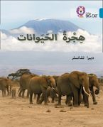 Animal Migration: Level 13 (Collins Big Cat Arabic Reading Programme) Paperback  by Deborah Chancellor