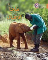 Elephant Sanctuary: Level 12 (Collins Big Cat Arabic Reading Programme)