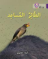 The Helper Bird: Level 8 (Collins Big Cat Arabic Reading Programme)