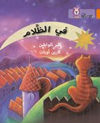 In the Dark: Level 6 (Collins Big Cat Arabic Reading Programme) Paperback  by Claire Llewellyn