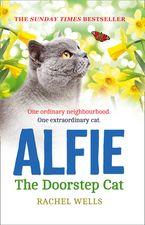 Alfie the Doorstep Cat (Alfie series, Book 1) Paperback  by Rachel Wells