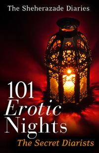 101-erotic-nights-the-sheherazade-diaries