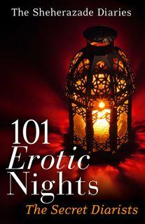 101 Erotic Nights