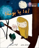 Oh Owl!: Level 4 (Collins Big Cat Arabic Reading Programme)