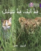 Tame Cat, Wild Cat: Level 8 (Collins Big Cat Arabic Reading Programme)