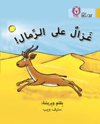 Gazelle on the Sand: Level 9 (Collins Big Cat Arabic Reading Programme) Paperback  by Steve Webb
