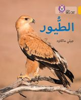 Birds: Level 9 (Collins Big Cat Arabic Reading Programme)