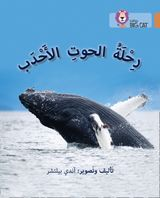 Journey of Humpback Whales: Level 12 (Collins Big Cat Arabic Reading Programme)