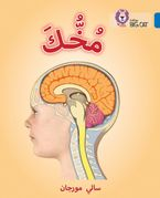 Your Brain: Level 16 (Collins Big Cat Arabic Reading Programme) Paperback  by Sally Morgan
