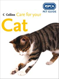 care-for-your-cat-rspca-pet-guide