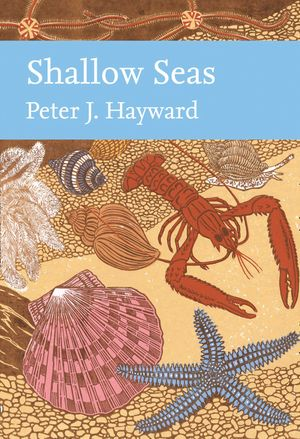 Shallow Seas (Collins New Naturalist Library, Book 131) book image
